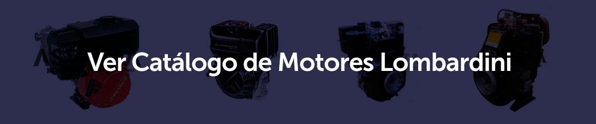 Lombardini engines